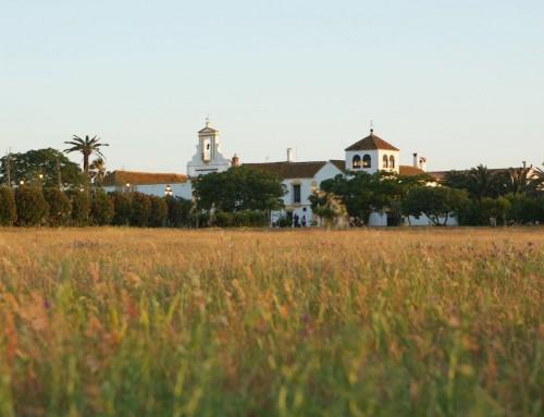 Vera Cruz hacienda